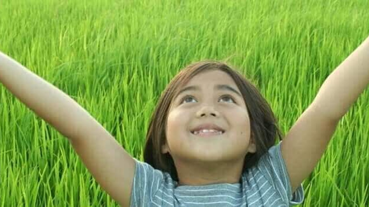Una niña extiende sus brazos al cielo mientras disfruta en un campo de altos pastizales